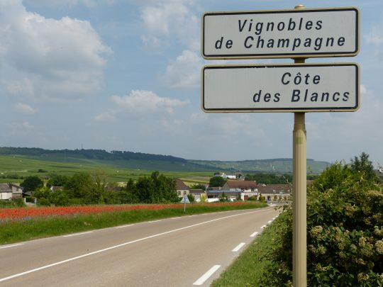 Fietsreis fietsbedevaart fietsblog reisverslag review Santiago de Compostela Champagne Côte des Blancs