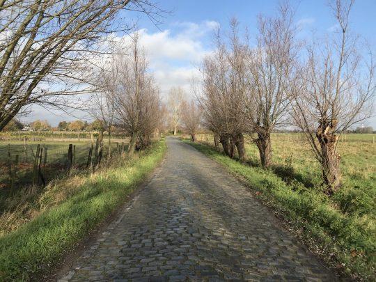 Fietsroute review fietsblog Scheldeland fietslus Vermoedeleyck Overmere