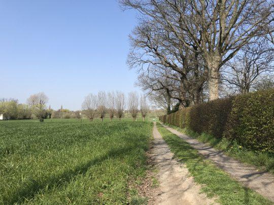 Fietsroute review fietsblog fietsen Leieroute