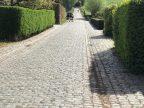 Fietsroute fietsblog Koppenberg Melden kasseien