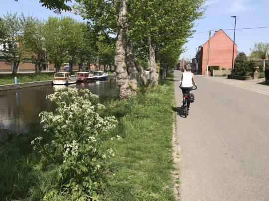 Fietsroute fietsblog Oudenaarde jachthaven