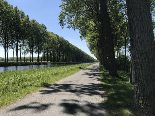 Riante Polderroute fietsroute fietsblog Damse Vaart Napoleon bomenrij