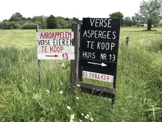 Fietsroute fietsblog Scheldedijkroute Puurs asperges