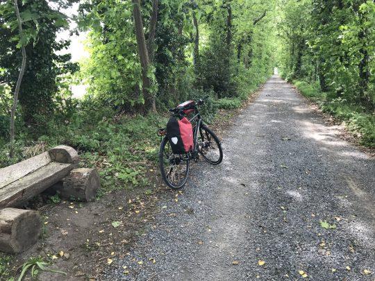 Fietsroute fietsblog Scheldedijkroute Lippelobos bos
