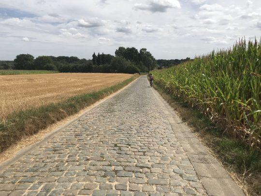 Fietsroute fietsblog Witkap Ninove kasseistrook review