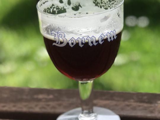 Fietsroute fietsblog Bornem Scheldedijkroute bier bruin