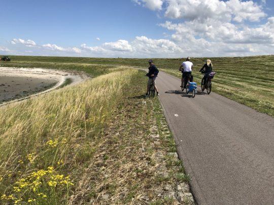 Fietsroute fietsblog Westerschelde dijkpad Ivan