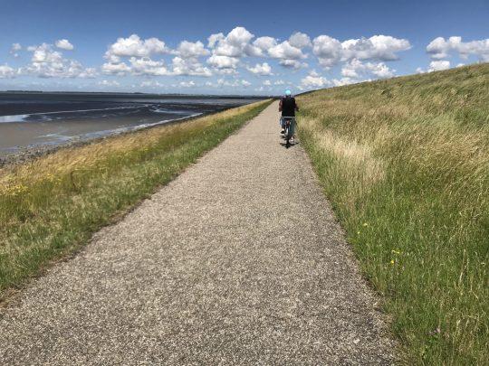 Fietsroute fietsblog Westerschelde dijkpad