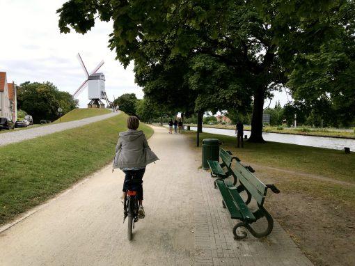Fietsroute review fietsblog Brugge molen
