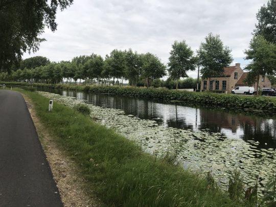Fietsroute review fietsblog Brugge fietsen Damse Vaart