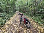 Fietsroute, fietsblog, review, Beringen, Tessenderlo, natuurgebied Ossenbroeken-Swinnebroeken