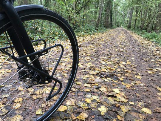 Fietsroute, fietsblog, review, natuurgebied, Ossenbroeken-Swinnebroeken