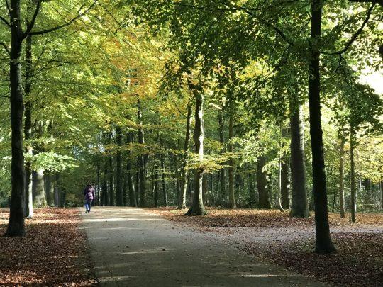 Fietsroute fietsblog review Gaasbeek kasteel Zuunbeekroute