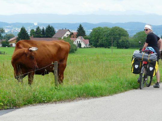Fietsreis fietsroute review reisverslag fietsbedevaart Romereis Sigmaringen