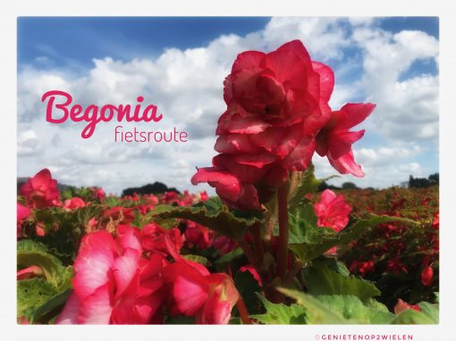 Fietsroute, fietsblog, review, begoniaroute, begonia