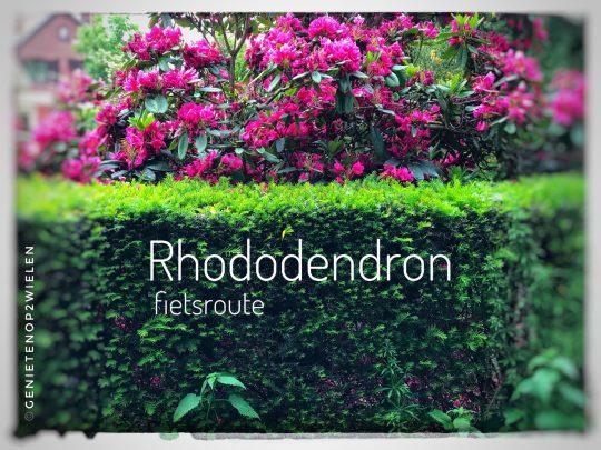 Fietsroute, fietsblog, review, rhododendron