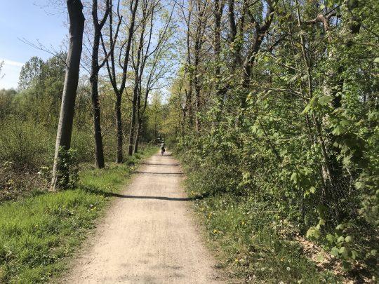 Fietsroute, fietsblog, review, roze olifant