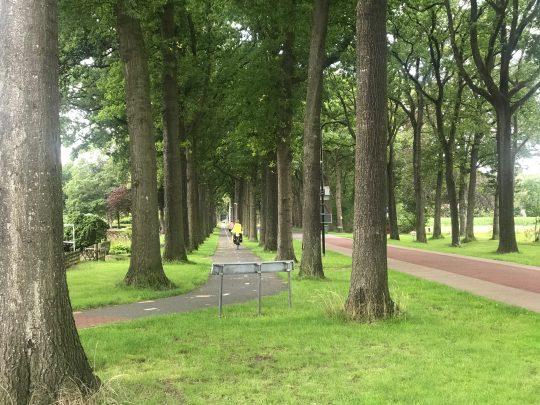 Fietsroute, fietsblog, review, rondje Drenthe, Vledder