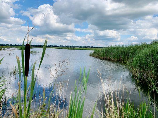 Fietsroute, fietsblog, review, rondje Drenthe, Buinen