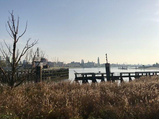Fietsroute, fietsblog, review, Antwerpen, haven, skyline