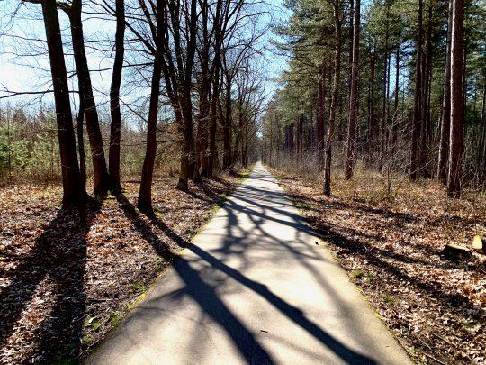 Fietsroute, fietsblog, geuzenbaan, fietsparadijs, duinengordel, Gruitrode, Duinengordel, Ophovenerbos