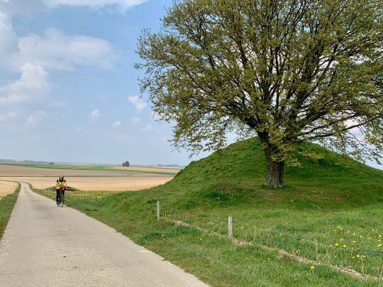 Fietsroute, fietsblog, fietsparadijs, Limburg, Haspengouw, Bloesemroute, Twee Tommen, Gingelom