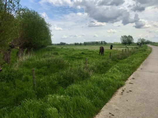 Fietsroute fietsblog review fietslus fietsverslagen Scheldeland Berlare Broek
