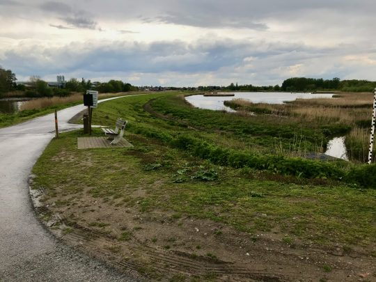 Fietsroute fietsblog review fietslus fietsverslagen Scheldeland Schelde Berlare Paardenweide