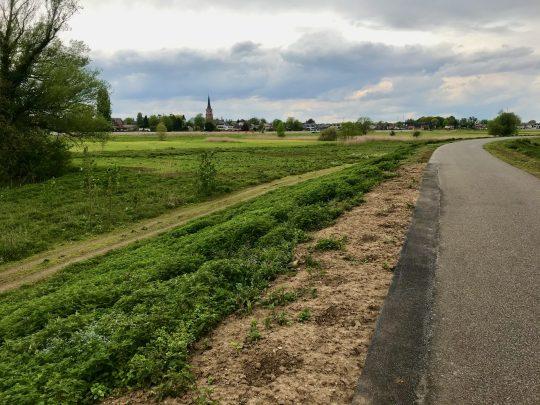 Fietsroute fietsblog review fietslus fietsverslagen Scheldeland Schelde Wichelen