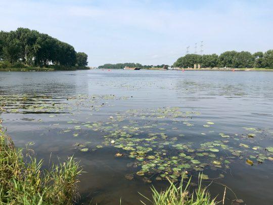 Fietsroute, fietsblog, review, fietsverslag, LF Maasroute, Maasplassen, Roermond